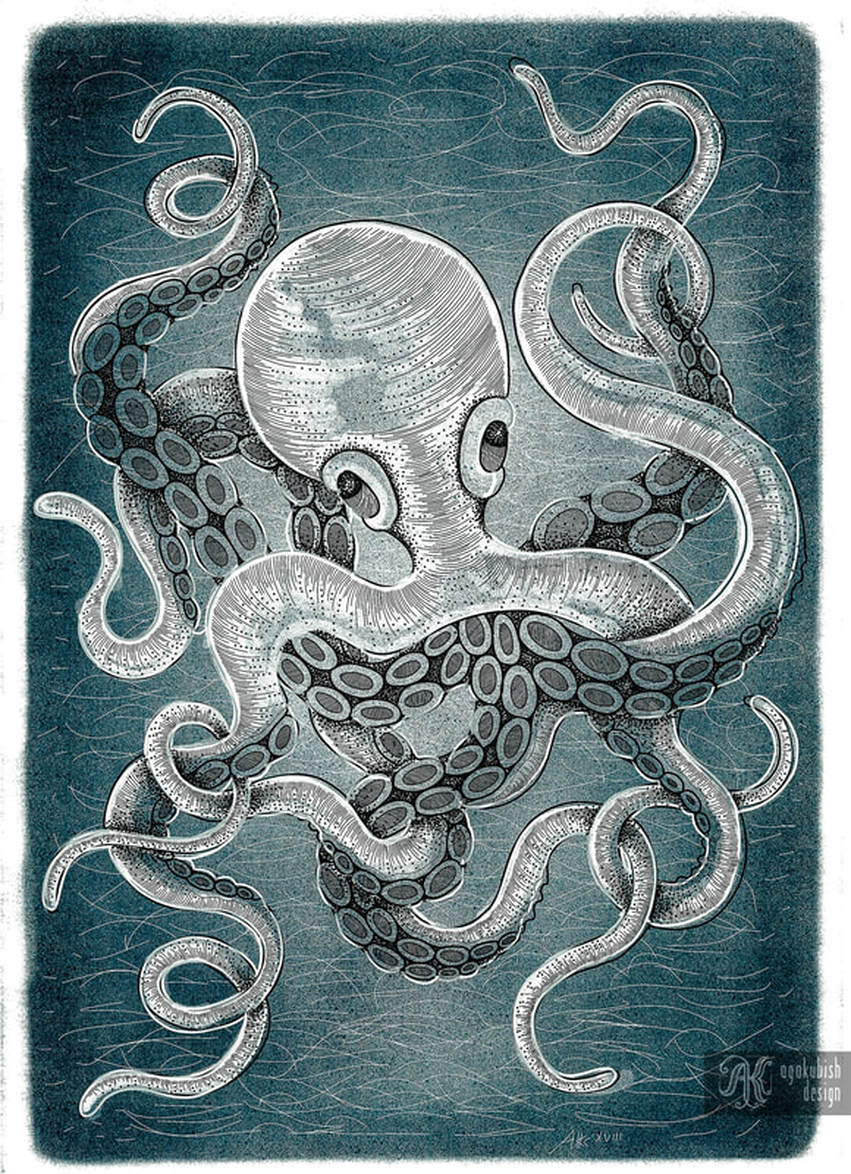 Octopus in the water digital illustration